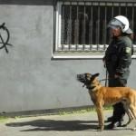 """Lei do """"Anarquismo"""" na Indonésia concede à polícia um cheque em branco para violência"""
