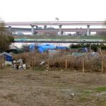 Chamado à solidariedade: A situação dos trabalhadores sem teto no Japão
