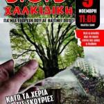 [Grécia] 09 de novembro de 2013: Dia Internacional de ação contra as minas de ouro em Calcídica