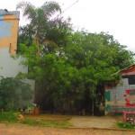 Comunicado da Okupa Bosque Ibirapijuka sobre iminente ameaça de despejo, Porto Alegre (RS)
