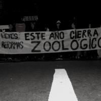 [Uruguai] Marcha de sexta-feira, 25 de abril: Abaixo os muros do zoológico Villa Dolores!
