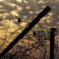 """[Grécia] Os presos suspendem greve de fome contra as """"prisões de segurança máxima"""""""