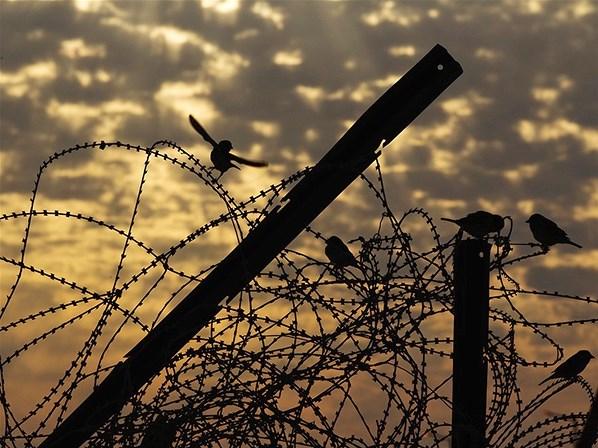 grecia-os-presos-suspendem-greve-1