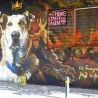 [Grécia] Loukanikos ganha mural em sua homenagem em Atenas