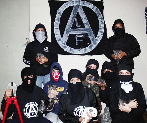 sao-paulo-ativistas-invadem-siti-1