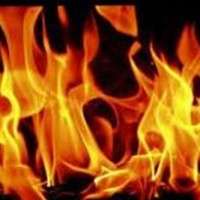 [Austrália] Veículos de construção são incendiados pela ALF/ELF