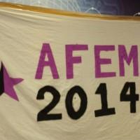 [Reino Unido] AFem 2014: Crônica anarcofeminista