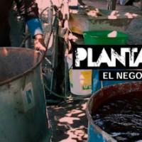 """[Chile] Documentário: """"Plantar Pobreza, O negócio florestal no Chile"""""""