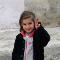 [Kurdistão] Rojava: uma luta com substrato libertário