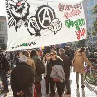 """[Turquia] Fotos do evento """"Um dia Anarquista, Queer, Vegan"""" em Istambul"""