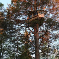 [Finlândia] Chamada à solidariedade internacional com 5 ambientalistas em greve de fome