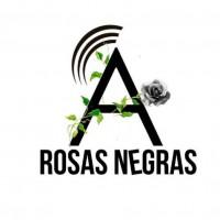 [El Salvador] Rosas Negras: programa de rádio de feminismo anarquista