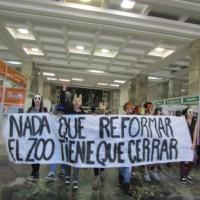 [Uruguai] Intervenção na Prefeitura pelo fechamento do zoológico Villa Dolores