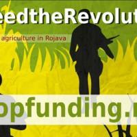 [Curdistão] Campanha de crowdfunding para a autossuficiência de Rojava