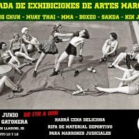 [Espanha] Madrid: II Sarau de Exibições de Artes Marciais