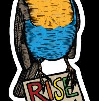 """Riseup: """"Precisamos da sua ajuda para manter as coisas andando neste ano"""""""