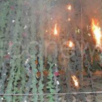 [Grécia] Árvore de natal incendiada por anarquistas em Creta no aniversário do assassinato de Alexis Grigoropoulos