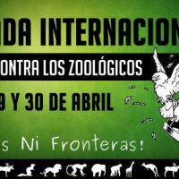 Jornada internacional de luta contra os zoológicos, de 28 a 30 de abril