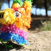 """[Espanha] Atualização da situação legal do caso """"Piñata"""""""