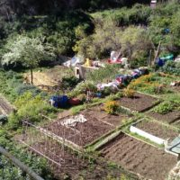 [Espanha] Can Masdeu: paradigma da okupação agroecológica
