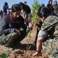 [Curdistão] Vídeo: Jinwar, o nascimento da primeira aldeia de mulheres livres de Rojava