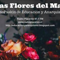 """[Chile] """"As Flores do Mal"""", rádio pasquim de educação e anarquismo"""