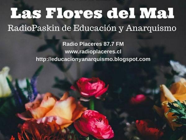 chile-as-flores-do-mal-radio-pasquim-de-educacao-1