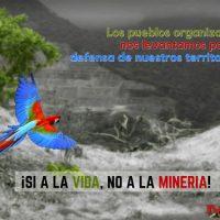 """[Costa Rica] """"O M4 existe porque resiste"""""""