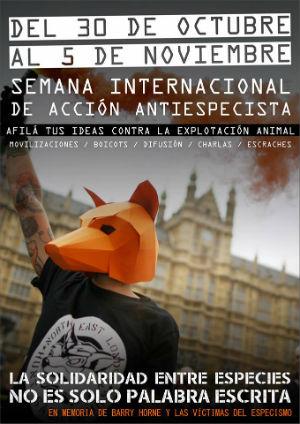 semana-internacional-de-acao-contra-o-especismo-1