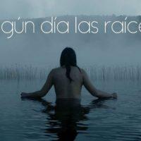 """[Chile] Campanha de financiamento """"Algún día las raíces"""", filme inspirado na vida de Matías Catrileo"""