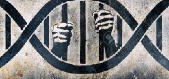 franca-solidariedade-com-fabien-garino-1
