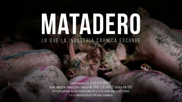 mexico-documentario-matadero-lo-que-la-industria-1