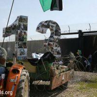[Palestina-Israel] 13 anos de luta contra o Muro