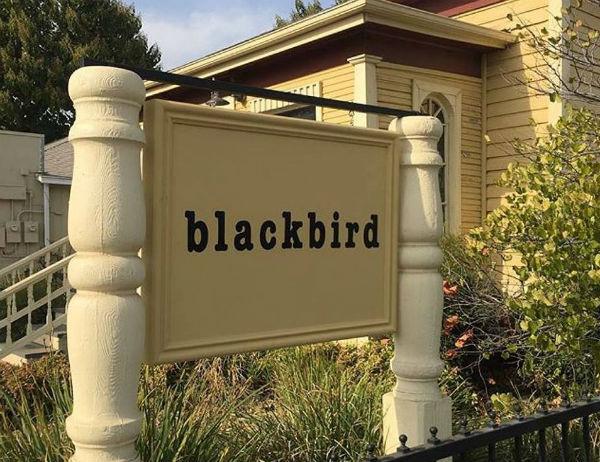 eua-um-local-para-agir-blackbird-engajada-com-o-1