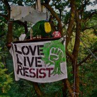 [Alemanha] Morte trágica na floresta de Hambach