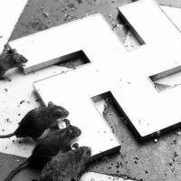 [Espanha] Parar o fascismo... votando?