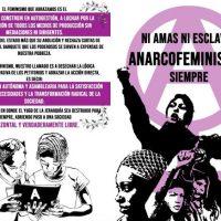 [Chile] Comunicado de mulheres anarquistas a propósito do dia Internacional da Mulher Trabalhadora