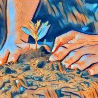 [Espanha] Agroecologia como instrumento de mudança