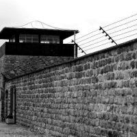 [Áustria] Governo espanhol denuncia colaboração do franquismo com crimes do nazismo