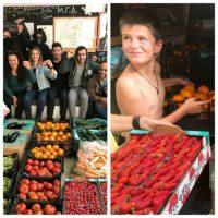 [Grécia] Mais de uma tonelada de frutas, verduras e azeite de oliva orgânico de Creta para Exarchia e coletivos arredores