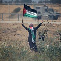 Do apartheid à resistência