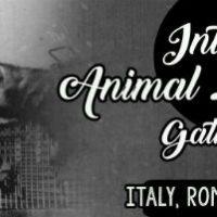 [Itália] Encontro Internacional pela Libertação Animal em Roma | 26 a 28 de julho