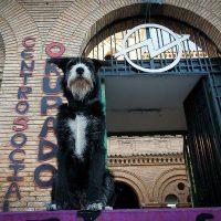 [Espanha] CSO Kike Mur em luta