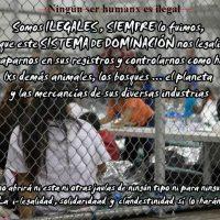 [Peru] Apenas um ser domesticadx reclama ser legal-izadx (registradx domesticadx alienadx ao sistema...)