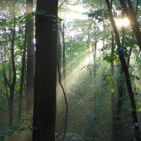 [Espanha] Anarquismo e espiritualidade: uma conta pendente