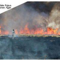 [Espanha] Renascemos das cinzas. Apoie os agricultores de Rojava!