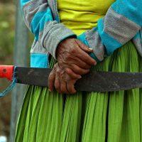 [Wallmapu] Comunicado público da nação Mapuche em solidariedade com a resistência do povo do Equador