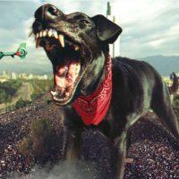 [Chile] Quem tem medo do anarquismo?