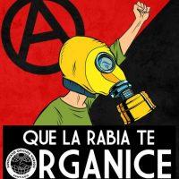 [Chile] Que a raiva te organize