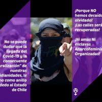 [Chile] Comunicado do Círculo Anarcofeminista Ni Amas Ni Esclavas frente a pandemia e a volta à normalidade